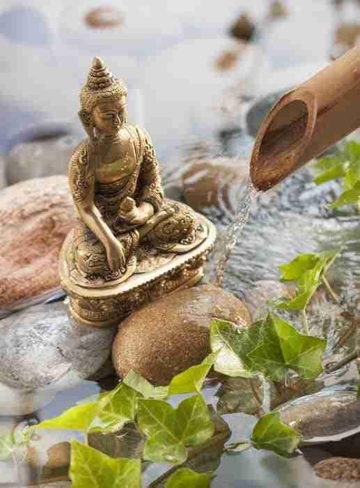 Meditare A Tavola-La Meditazione Presenza Costante