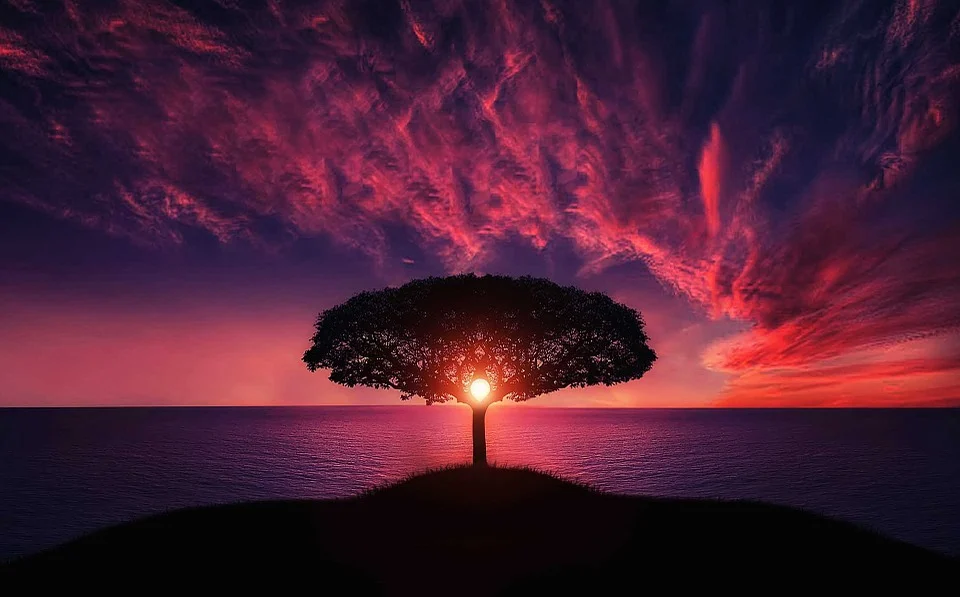 Luce Prima del Sole - Sole